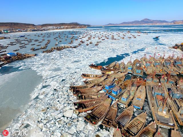 2018年2月3日,渔船在辽宁省大连市金石滩海域的冰海上破冰艰难运送海货。(图片: 东方IC)