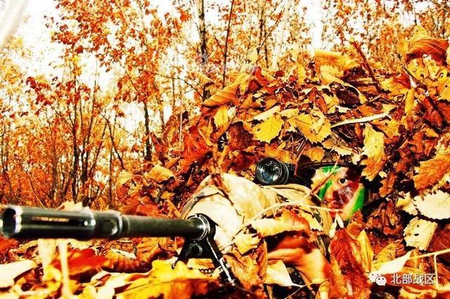 """金秋十月,天气转凉,受冷空气袭击,大兴安岭密林深处树叶开始变色,各种深浅不同的绿、白、黄、红、紫色开始呈现,""""五花山""""渐渐形成。(北部战区陆军公众号/作者:孙强、周杰、刘坤厚 摄影:闫红青)"""