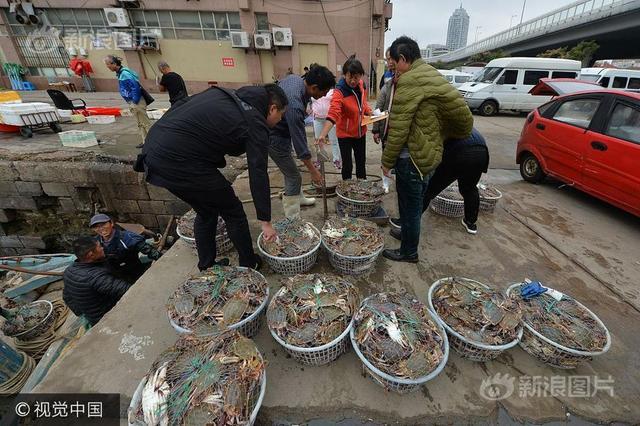 2017年10月10日,在青岛市渔港码头,刚刚从船上卸下的梭子蟹价格低廉,吸引了部分市民前来选购。