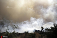 美国加州又遭山火肆虐