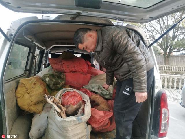 2018年2月11日,江西省瑞昌市公安局交管大队通江岭中队警察在执勤中发现一辆载有大量野生动物的面包车,见此情景,执勤警察随即将车拦截并通知当地森林公安。来源:东方IC