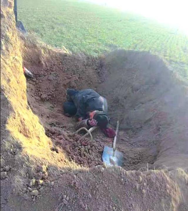 11月30日报道,2018年1月至3月,三个月内,河南叶县仙台大李庄村徐义明父母的坟墓两次被同村一位73岁的男子马留成掘开。来源:新京报