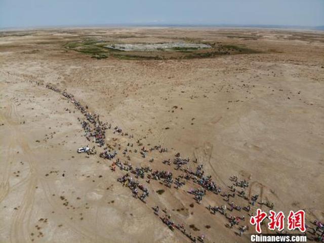 5月16日,首届丝绸之路(敦煌)国际徒步节在古代丝绸之路的重要枢纽和四大文化体系的交汇之地敦煌举行,来自国内外1500余名徒友开始了徒步挑战戈壁丝路古道的征程。16日至19日,千名徒友将徒步穿越玉门关、阳关、雅丹等丝路古道,沿线地貌为戈壁、盐碱地、河床、沙丘等地貌,共计108公里。