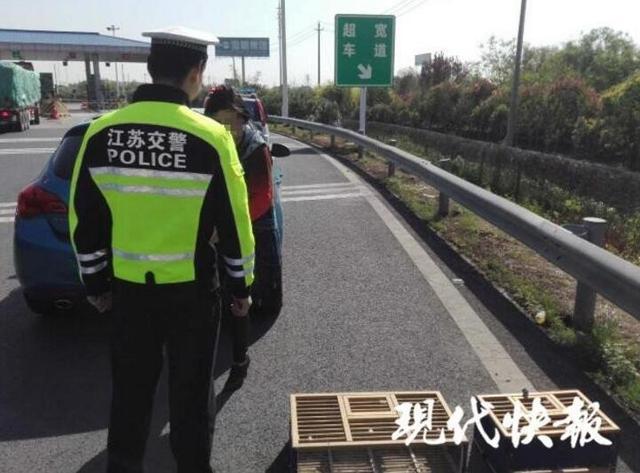 4月16日报道,15日上午,江苏镇江交警在泰镇高速上查处了一名违法停车的女司机,令人没想到的是,这名女子在高速公路上违停的原因竟然是为了放鸽子。记者从镇江交警高速三大队获悉,15日9时,该大队警察巡逻至泰镇高速常泰方向44公里处时,发现在扬中收费站匝道处(下高速前路段)停着一辆小轿车,车后面还放着两个装满鸽子的木箱。警察立即靠边查看情况。来源:现代快报全媒体