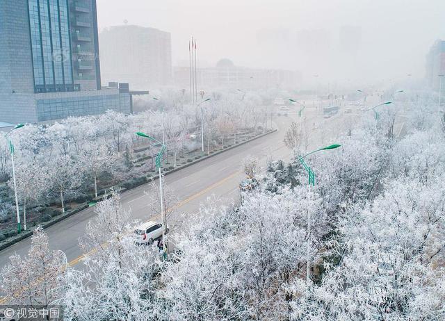2019年1月12日早晨,山西运城出现雾凇美景。