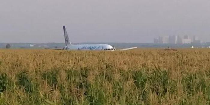 俄客機創奇跡:與鳥群相撞后成功迫降 人員全生還