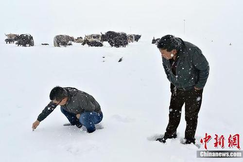 三江泉源迎来降雪 积雪深度达8厘米