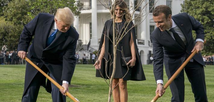 特朗普与马克龙种树 被网友吐槽