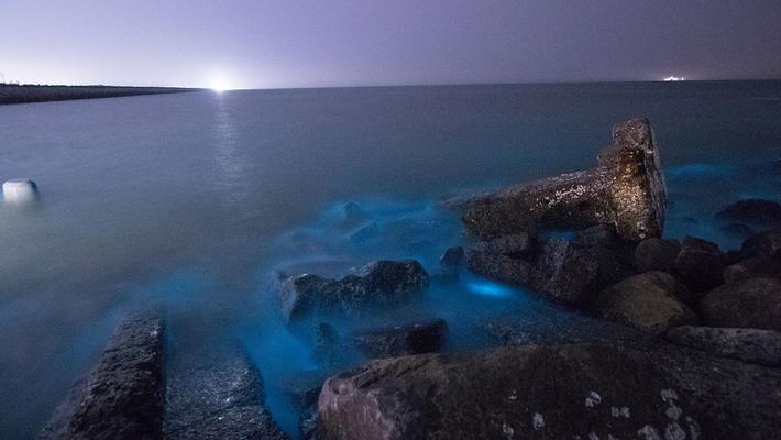 山东东营沿海现荧光海滩