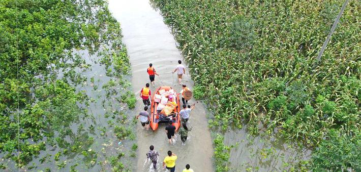 广西36万人受洪灾 干部涉水运物资