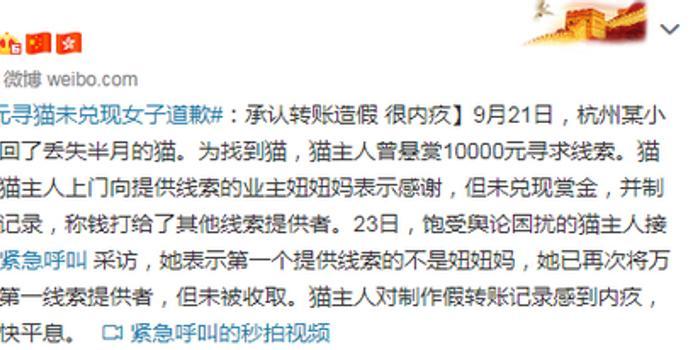 萬元尋貓未兌現女子道歉:承認轉賬造假 很內疚