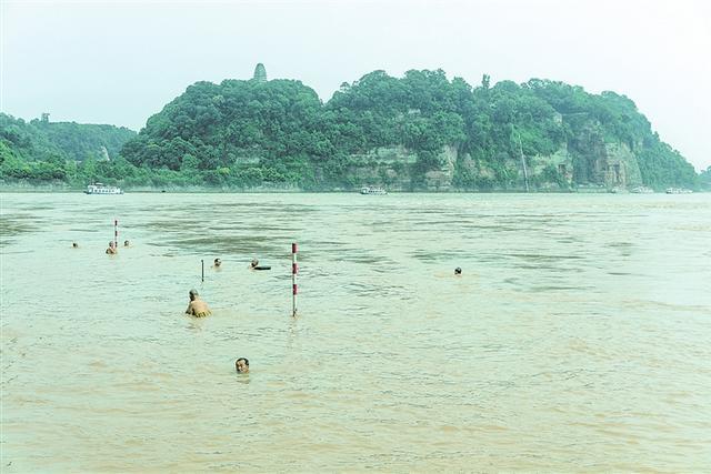 寒来暑往,在乐山城区肖公嘴冬泳广场,总能见到畅游三江的冬泳爱好者。无论是白发苍苍的老者,还是稚气未脱的少年,冬泳爱好者们都把江河当作乐园,尽情享受游泳带来的乐趣。他们的规模,也由最初的几十人发展到上千人。    据统计,虽然目前登记在册的市冬泳协会会员只有188名,但盛夏时节每天有超过2000人次来到冬泳广场下河游泳。    除了游泳健身,冬泳爱好者们还多次在危急关头救起落水者,受到广大市民和游客的交口称赞,成为乐山一道靓丽的风景线。    市冬泳协会常务副主席骆实表示,游泳既能强健体魄,又能愉悦身心。希望更多的人参与到体育锻炼中来,提升我市群众体育水平,使全民健身活动焕发出勃勃生机。    记者 龚启文 摄