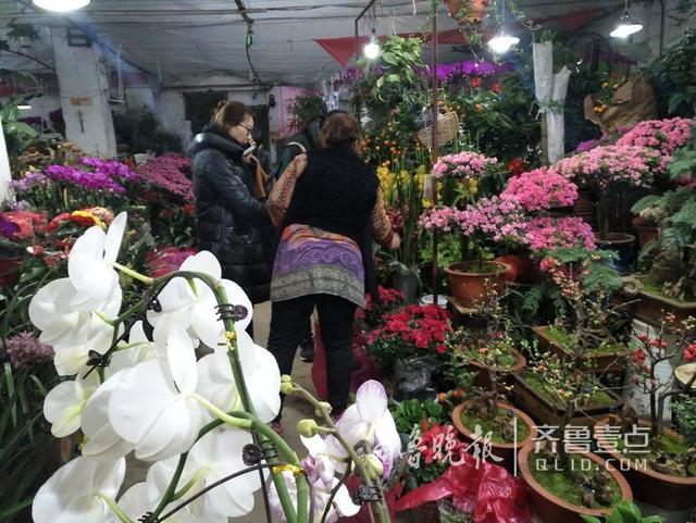 在济南历山路一家花卉市场,买盆栽、花束的市民真不少,大部分市民买花都是为了装饰自己家,也有的顺便买几盆送给亲友。相化烟花爆竹,盆栽花卉开放时间长,既可以调节氛围,又一定程度上能净化室内空气。一家鲜花女店主告诉记者,平时购买鲜花的,单位、机构用花占了相当比重,春节前顾客则以装饰家庭的市民为主。(齐鲁晚报·齐鲁壹点记者 蓝峰)