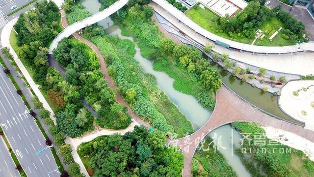 近日,空中看腊山河景观带绿油油一片,两岸的木栈道焕然一新。据了解,经过一个月的施工修复,因使用时间较长而开裂、翘起、破损的木板已全部更换。 齐鲁晚报·齐鲁壹点记者 王媛 摄