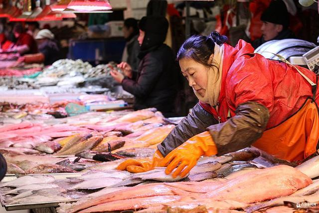 春节临近,青岛各大海鲜市场迎来销售旺季,逛一逛浮山后埠西、团岛、南山、李村大集等热门市场,在售的海鲜种类不下百种。鲅鱼、大海螺、大头腥、黑头、鲈鱼、海肠、鲳鱼、带鱼、加吉……各种人气海货价格实惠味道鲜美,你家过年都买啥了?
