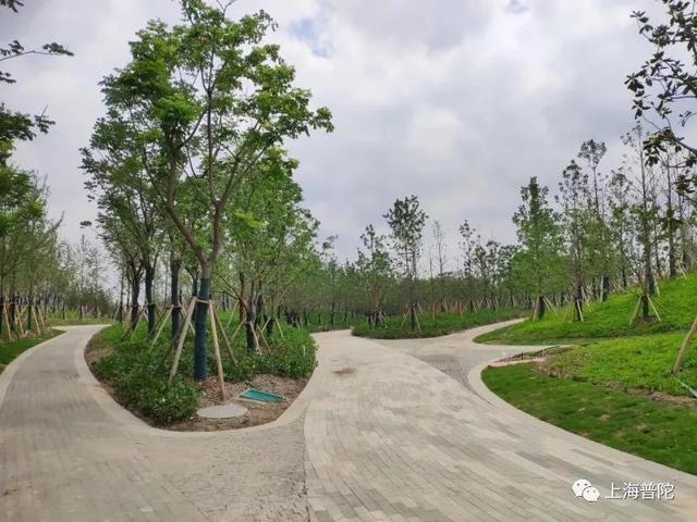 中心城区最大的开放绿地之一——桃浦中央绿地有新进展啦!普陀区新闻办说,该绿地东至景泰路、南至真南路、西至敦煌路、北至桃惠路及永登路,以武威路为界划分为北三块和南三块,分期开发建设。北三块占地面积247068平方米,其中的景观工程(除常和路、调蓄池、武威路及污染治理施工区域外)施工目前已完成,正在进行验收和移交工作。via.上海发布