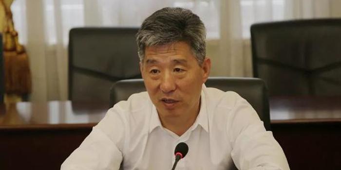大連棒棰島賓館集團有限公司原董事長王衛平被雙開