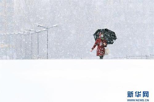 吉林长春大年夜雪纷飞