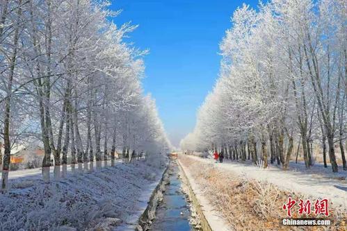 """内蒙古呼伦贝尔额尔古纳市街头现""""雾凇"""""""