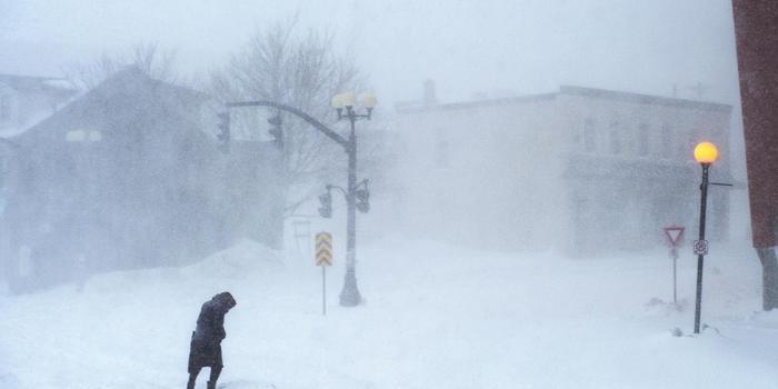 """加拿大紐芬蘭島遇暴風雪 汽車被""""雪藏"""""""