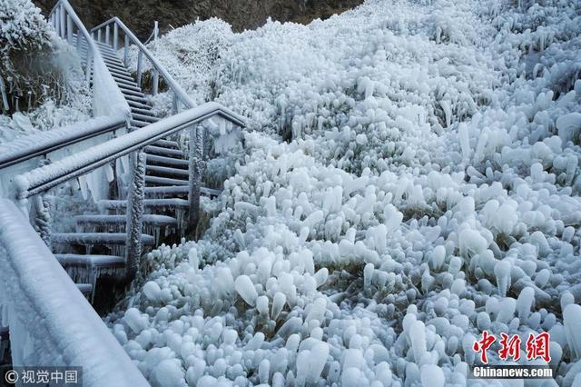 近日,冰岛的塞里雅兰瀑布在零下12摄氏度的气温下结冰,画面彷如天外仙境。图片来源:视觉中国
