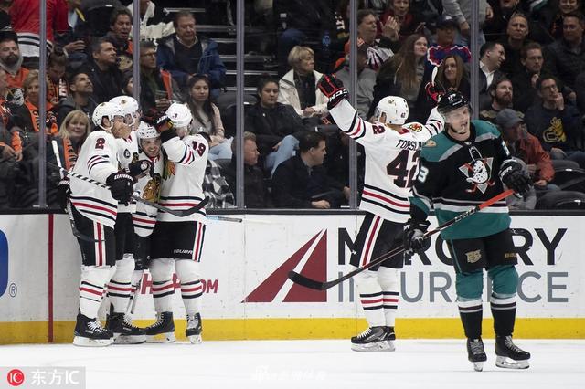当地时间2018年12月5日,美国阿纳海姆,18/19赛季NHL常规赛,芝加哥黑鹰2-4阿纳海姆鸭。