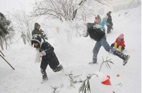 冬天打雪仗图片_打雪仗也能打出名堂 日本国际打雪仗大赛开赛_冰雪_新浪竞技 ...