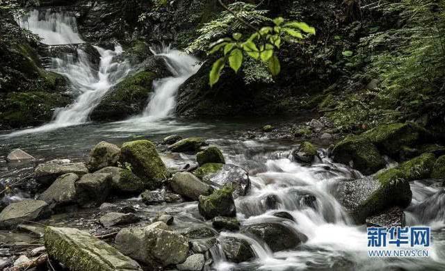 """在巴山深处的陕西省平利县八仙镇靛坪村,有一处长约近10公里的峡谷河流,镶嵌着120余个常态瀑布和季节性瀑布,它们与峡谷里大量深浅不一的潭穴,形成""""数十龙潭,百余瀑布""""的丰富水景景观。 7月7日拍摄的峡谷里似玉带的瀑布。记者陶明 摄 (来自:新华社)"""