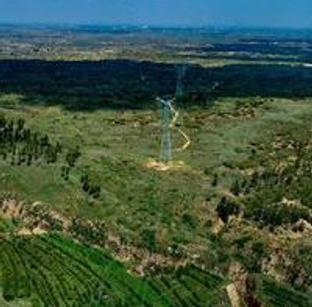 千树塔:沙漠中的绿色矿山