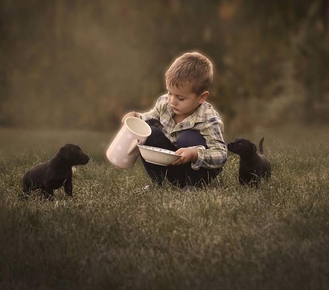 在温暖的火炉旁,充满童真的小男孩和怀抱一只小猫的女孩喃喃细语,多么温馨的画面,并且这样的画面似乎是只有在童话的世界里才会出现的。而来自塞尔维亚的摄影师Jelena Simic Petrovic便将这样的童话世界变成了现实,并且她还将更多的童话中的场景出现在她的摄影作品中,作为母亲的她也确实将儿童与动物之间的那份细腻的感情表现的淋漓尽致,让人心生暖意。