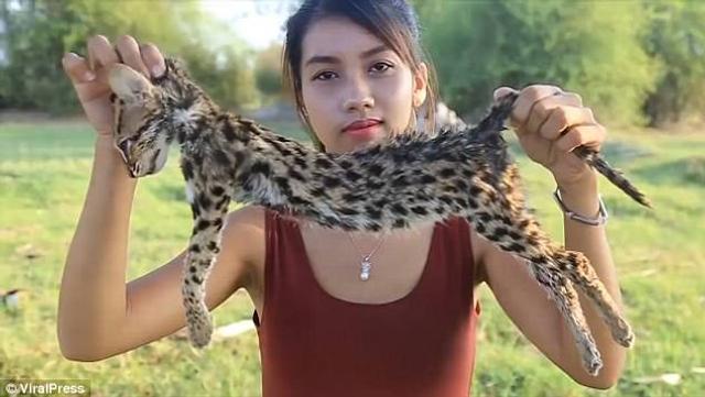 【环球网综合报道】据英国《每日邮报》5月14日报道,柬埔寨一名女子非法购买濒临灭绝的野生动物,并将自己杀害并食用这些动物的视频上传至视频门户网站YouTube,造成十分恶劣的影响,现已被当地警方逮捕。