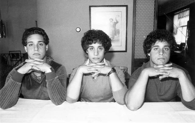 """分离三胞胎:以科学的名义,或者更精确的是为了搞清""""先天和后天的问题"""",心理学家进行一项秘密实验,他们将双胞胎和三胞胎彼此分离,然后以单胞胎方式寄养。据称,这项实验是由美国国家心理健康研究所资助的,直到1980年三个兄弟偶然发现了对方,他们一直不知道自己有同胞兄弟。"""