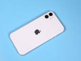 報告:蘋果將每年兩次發布iPhone 2020年機型包含4款