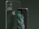 iPhone SE 2新圖曝光:iPhone11同款鏡頭/音頻孔歸來