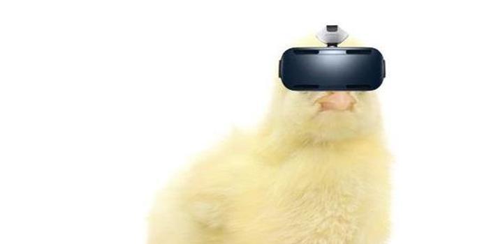 VR界:渠道为王还是内容优先?