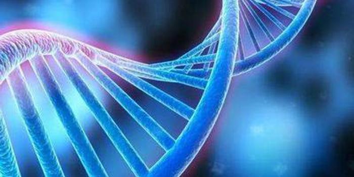 朝阳法院:基因编辑婴儿面临就业婚配等诸多法