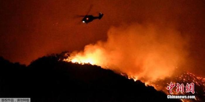 美国加州野火波及名流:施瓦辛格等被迫半夜撤离