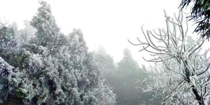 湖南南岳衡山景区迎今冬首场雾凇