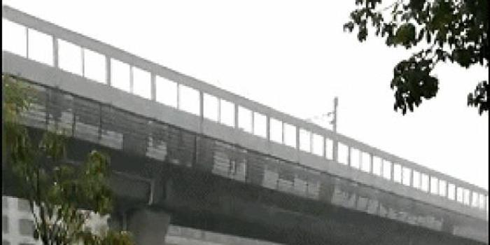 珠海灑水車暴雨天澆灌綠化帶?警方查證:不在珠海