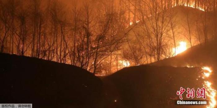 韩政府指定江原道火灾地区为特别灾区 将竭力援助