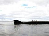 """躲在水下也没用,疫情""""击穿""""多国潜艇,海底将会传出咳嗽声?"""