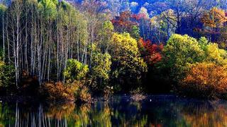 东北通化秋天的美