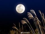 囧哥:真.中国的月亮比外国圆!今年月亮最圆在6日凌晨