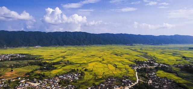 云南德宏陇川县户撒阿昌乡是个美丽的地方,地处云南边陲,与缅甸接壤,四面环山。户撒是佛祖的花园,田园是乡村的元素,是百姓的生活,也是收获季节最真实的风景写照。在户撒明净的天空下,无数条田埂纵横交错,没有任何修饰,没有任何夸张,它的美源于那片自然的金黄。(来源:德宏州委宣传部)