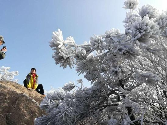 近两日,缙云大洋山小黄山山脊线上的雾凇又刷爆朋友圈了,蓝天、雾凇、奇石……这才带劲呢!被刷到朋友圈,围观~(来源:浙江新闻客户端)