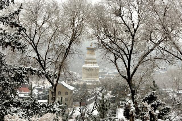 五台山,中国佛教四大名山,世界五大佛教圣地。位于山西省忻州市。五台山是文殊菩萨的道场。五台山的一大特色,就是既有青庙,也有黄庙,藏传佛教和汉传佛教并重,青庙和黄庙相互比邻,共同发展,这在四大佛教名山中是独有的现象。(来源:五台山佛教网)