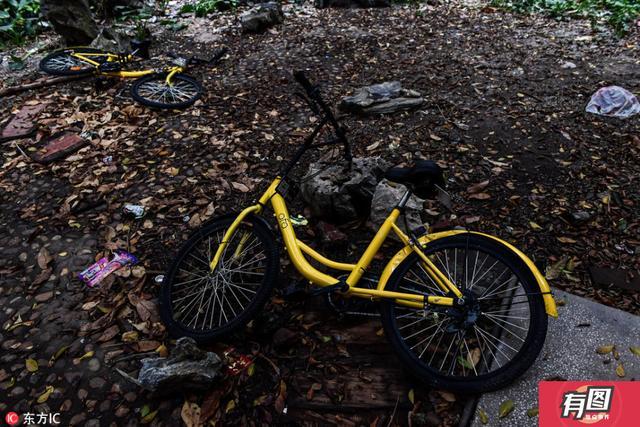 2017年3月17日报道,广州城中村故障的共享单车随处可见,部分遭人为破坏,随意弃置在树丛或垃圾堆里。2017年3月8日,广州棠下村,损坏的OFO共享单车被丢弃在城中村的公园当中。